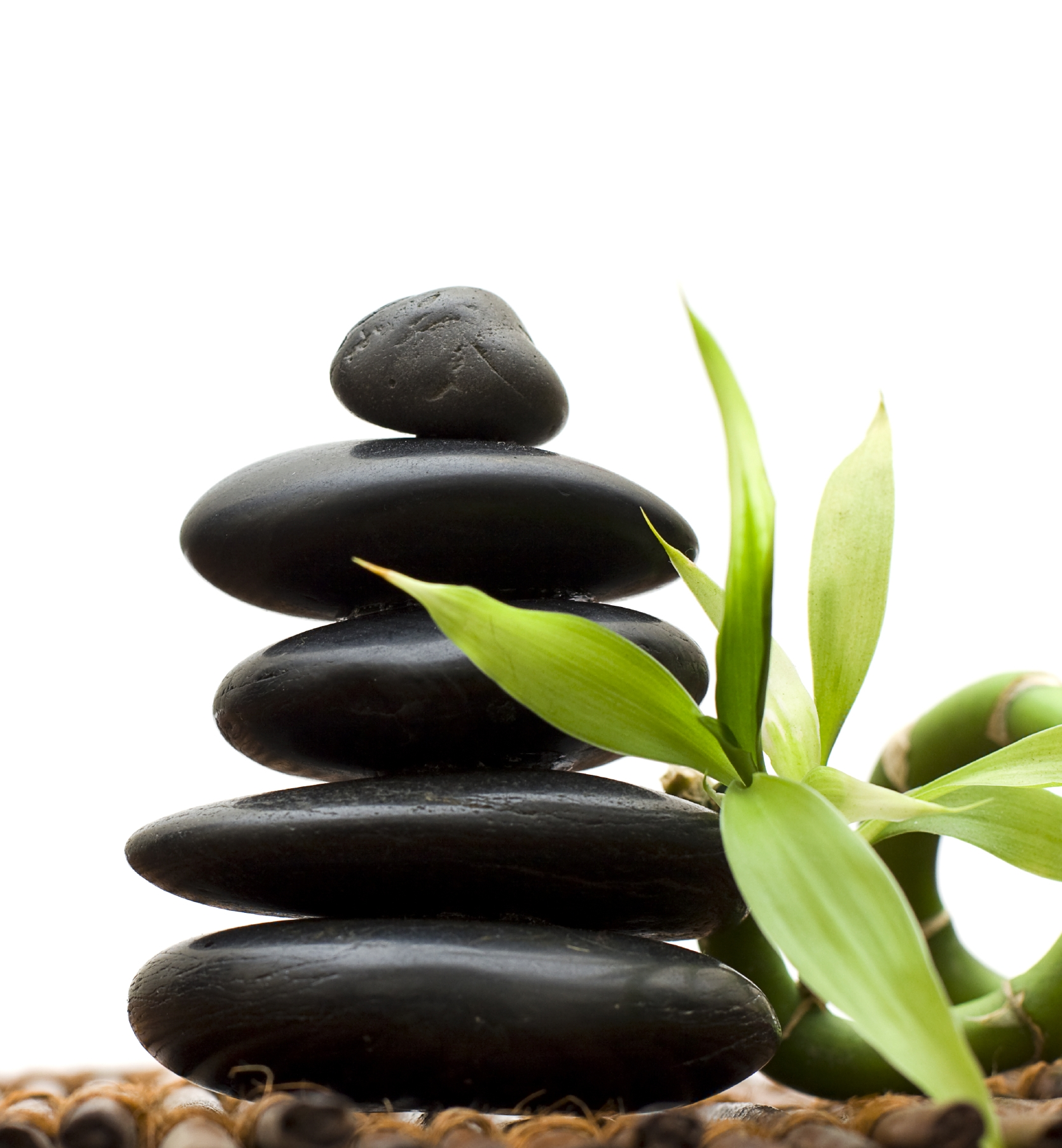 Zen concept with bamboo and stone - alternative medicine and tre